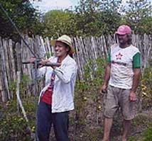 Paraguay Garden