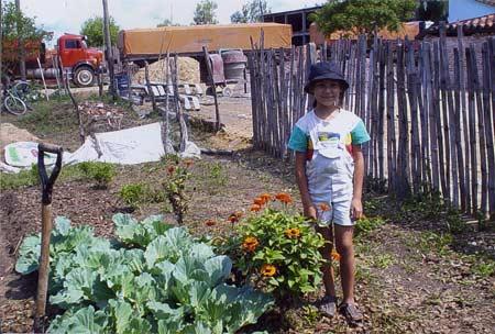 Garden network for Paraguay